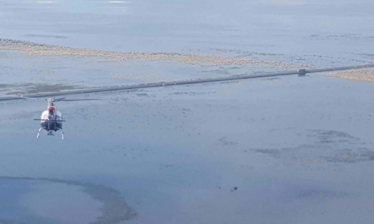 Audiencia por la emergencia en la laguna La Picasa