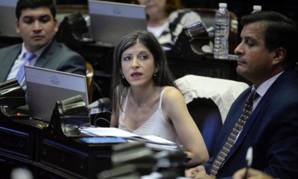 Vallejos no está (tan) sola: quiénes apoyan la capitalización estatal de empresas