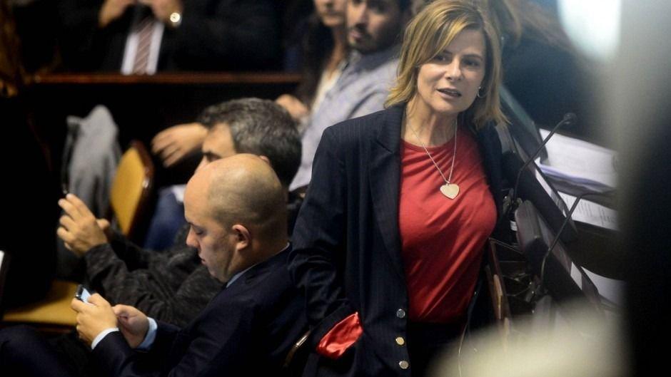 """""""La oposición del PRO es desfachatada, hipócrita y oportunista"""""""