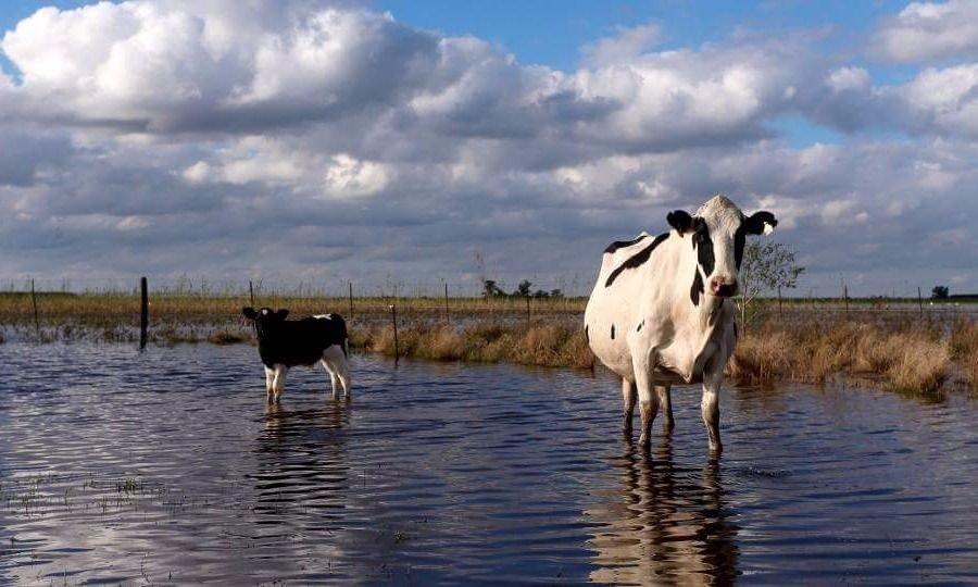 """Golpeados por el agua, tamberos focalizan en el """"déficit de infraestructura"""""""