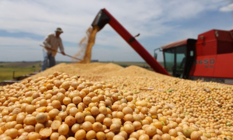 Los reclamos de la Federación Agraria bonaerense tras el acuerdo con bonistas