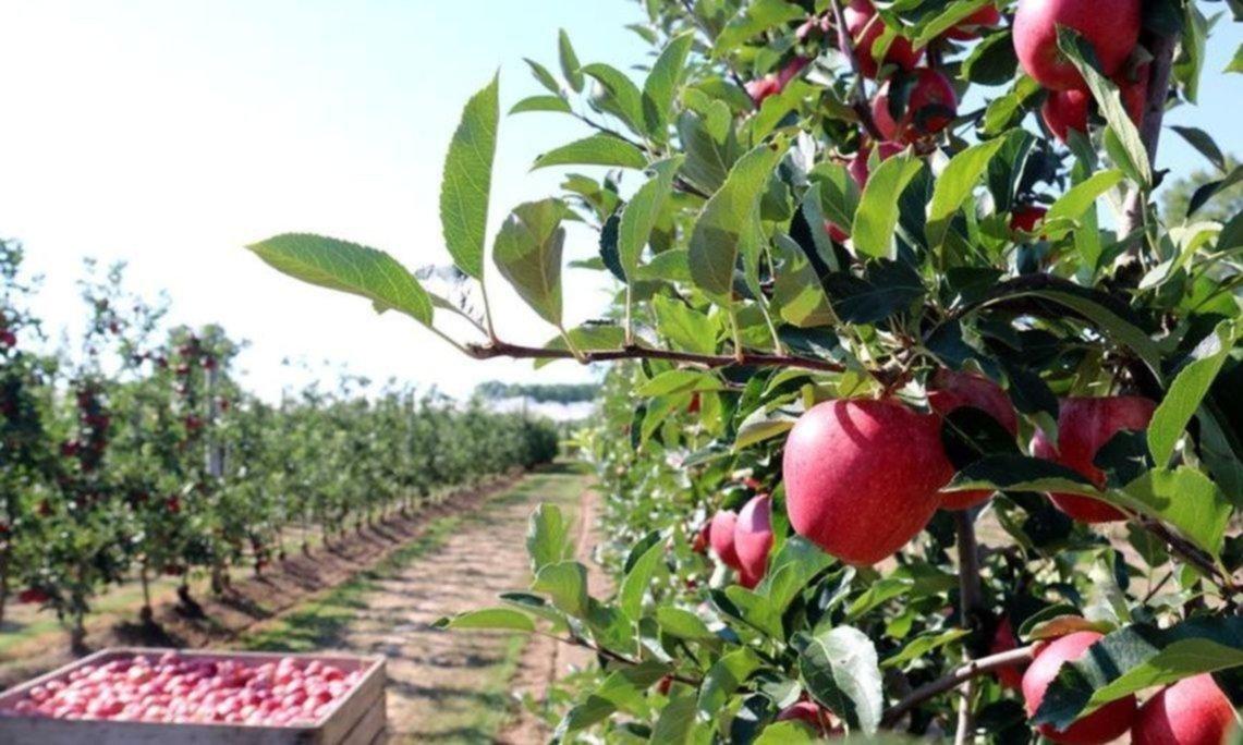 Fondagro: la Federación de Productores de Fruta presentes en otra reunión