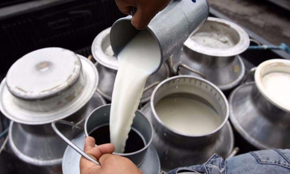 En 2020, la industria láctea sufrirá la peor producción en 10 años