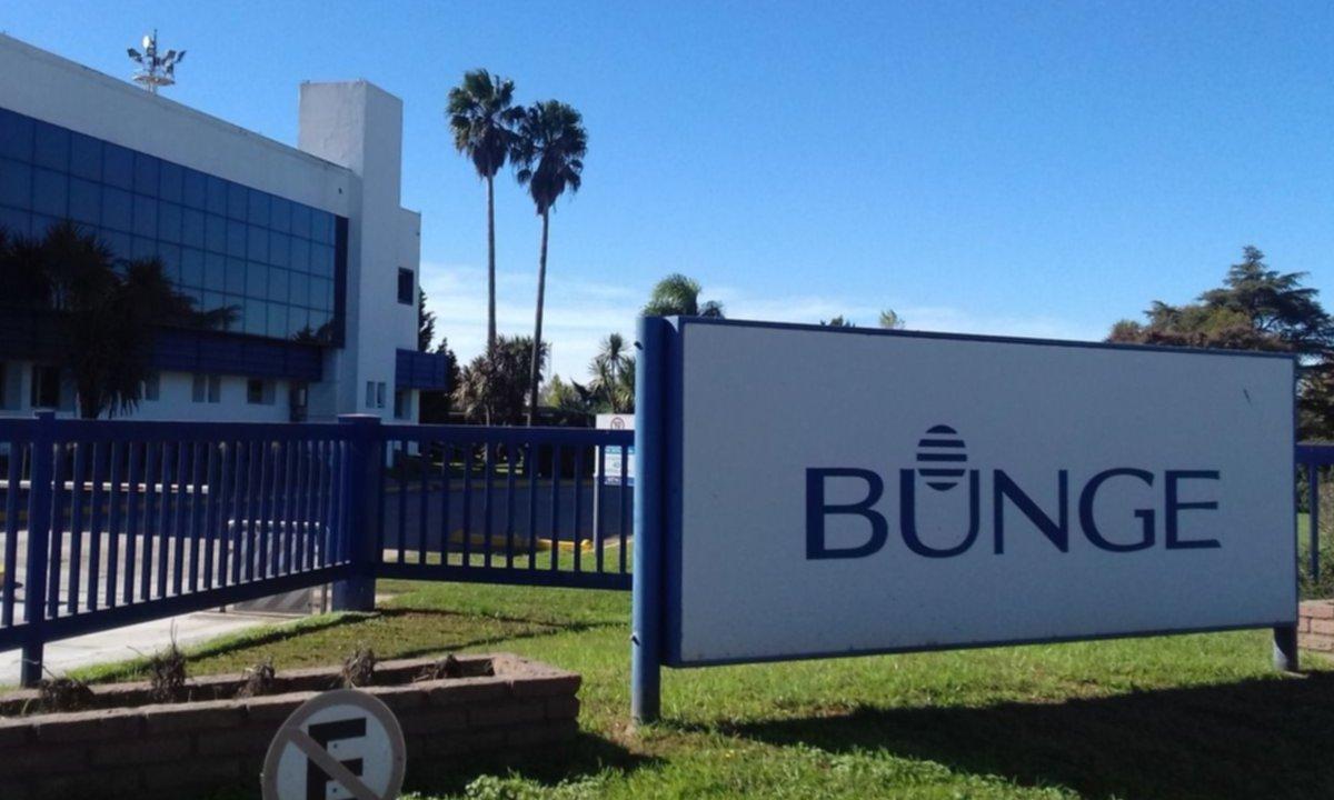 Investigan si Bunge evadió 100 millones de dólares con exportaciones fantasmas